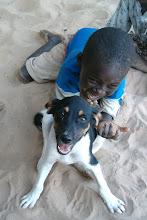 Photo: #Busua #BusuaInn #beach #ecolodge #EzileBay  #Africa #Ghana #Akwidaa #Busua #Westernregion #Ahanta www.ezilebay.com/ www.busuainn.com/ http://olivbusua.blogspot.fr