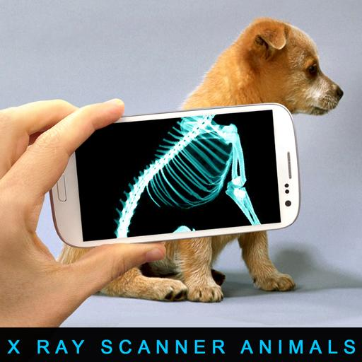 Xray Scanner Animals Prank