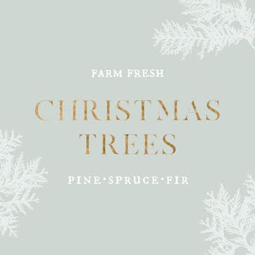 Farm Fresh Christmas Trees - Christmas Template