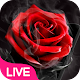 Smoke Red Rose Live Wallpaper for PC Windows 10/8/7