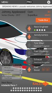 V8 Race Manager 2017 - náhled