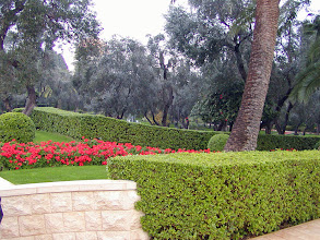 Photo: Access to the gardens is quite restricted except for members of the Baha'i faith.