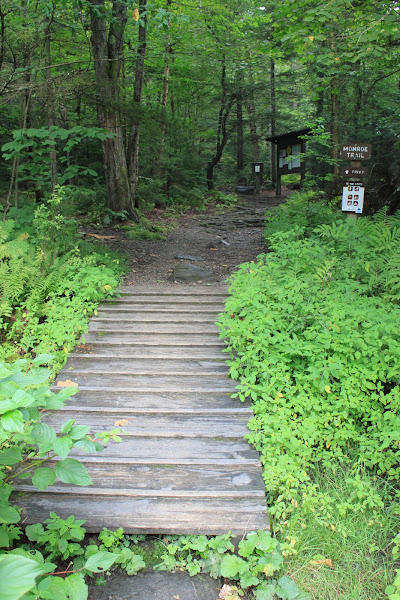 Photo: Trail head signs at Camel's Hump State Park by Paul Carney