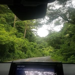 RAV4 ACA36W 2019年5月納車 サンルーフのカスタム事例画像 Takapi-さんの2020年06月27日14:13の投稿