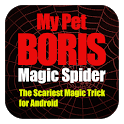 Magic Spider icon
