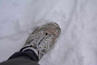 Photo: How much snow on the ground?