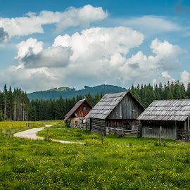 by Mario Horvat - Buildings & Architecture Other Exteriors ( pokljuka, slovenia, green, field, barn, old, clouds, abandoned )