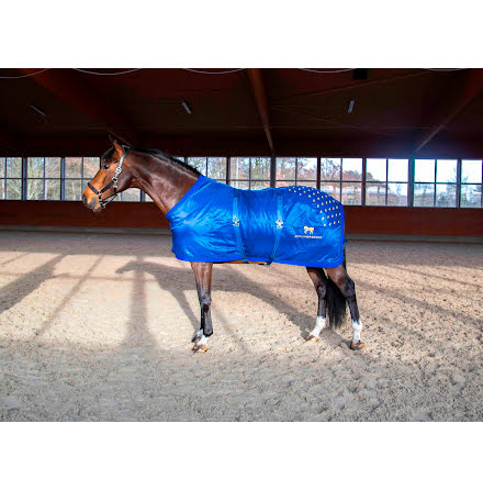 Accuhorsemat Original (blanket only)