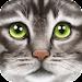 Ultimate Cat Simulator Icon