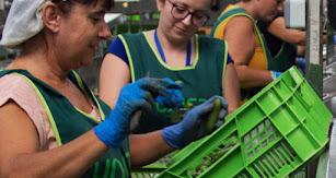 La Fundación UNICA estará al servicio de la formación de los agricultores.