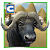 Buffalo Wild Bull Simulator file APK for Gaming PC/PS3/PS4 Smart TV