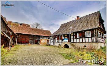 maison à Drachenbronn-Birlenbach (67)