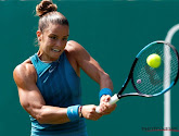 Finalistes van damesfinale op Roland Garros bekend
