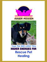 Calm your pet in stressful times with this powerful Rescue Pet Healing DVD program