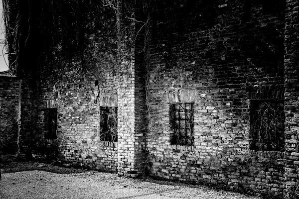 Darkness di Silentshoot-Photography