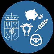 Lonja de Salamanca