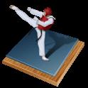 Taekwondo Bible icon