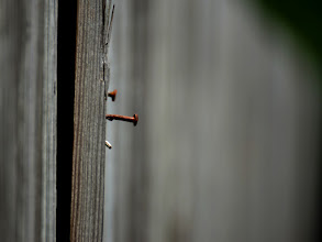 Photo: Almost off, but for now... #OnTheFenceWednesday by +Natosha Davis
