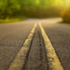 On the Road by Paul Aparicio - Novices Only Landscapes ( happy, green, street, perspective, yellow, road, bokeh, light, close up, sun )