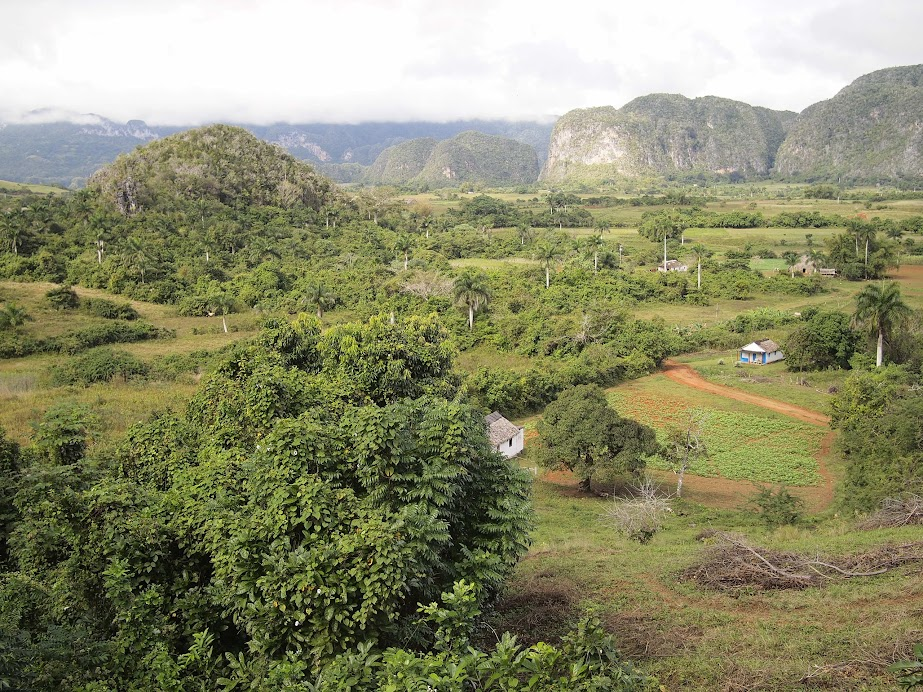 Beautiful and green Viñales