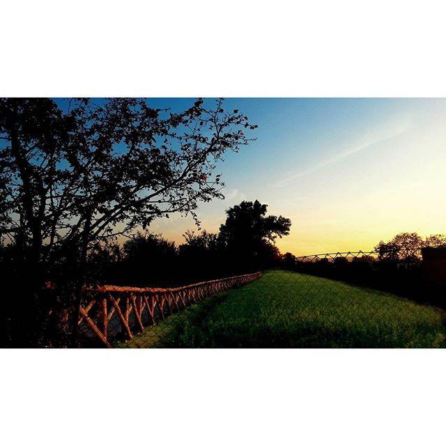 #landscape #nature #sunset #field #fence #italy #emilia #color #lovenature #trees #picoftheday #photooftheday #blue #igersemilia #igersitalia #peaceful #sun di marioscalzi76