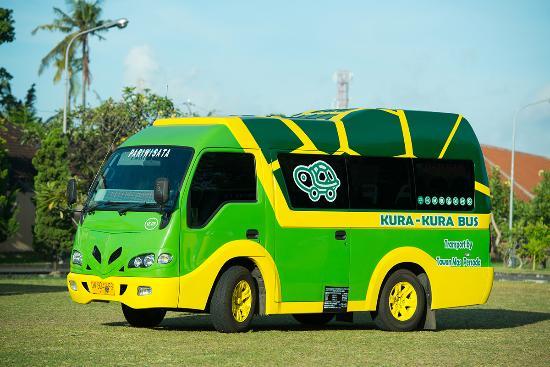 Kura-Kura Bus Bali Transportation