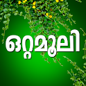 Ottamoolikal Malayalam icon