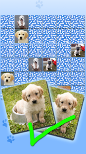 Puppy Games Kids - Cool Puppies for Cool Kids