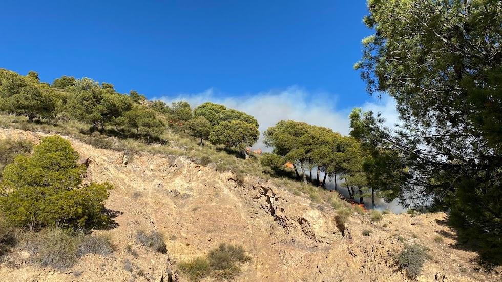 Imagen del incendio publicada por BerjaDigital.