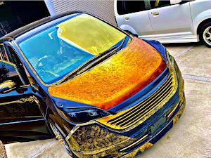 ステップワゴン RG1 のカスタム事例画像 YUUGAさんの2021年01月17日14:09の投稿
