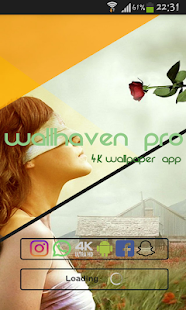 Wallhaven Pro - náhled