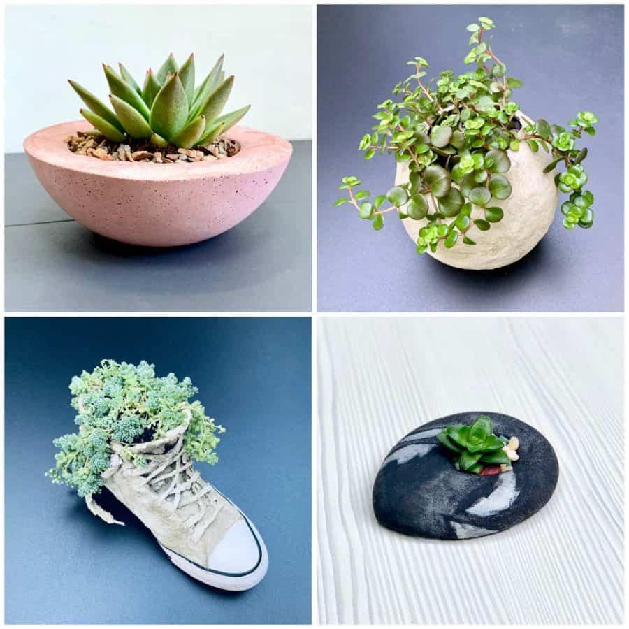 cement vs concrete-4 concrete planters with potted plants