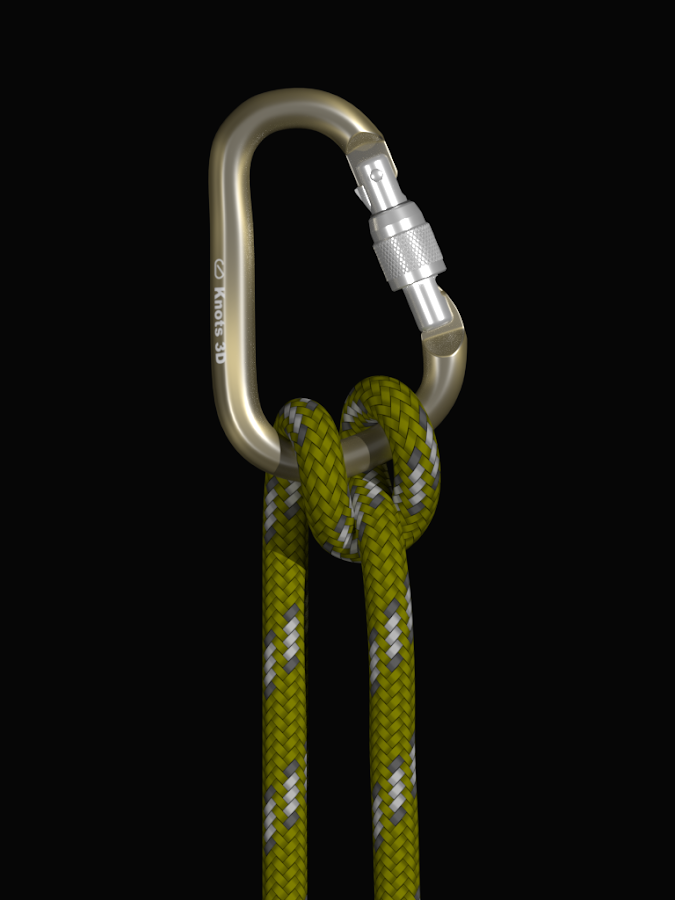 Knots 3D- screenshot