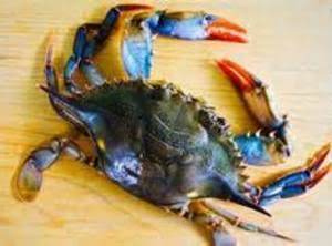 Sauteed Soft Shell Crabs (sallye)