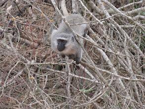 Photo: Ithala Game Reserve