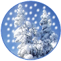 Snow Winter Live Wallpaper APK icon