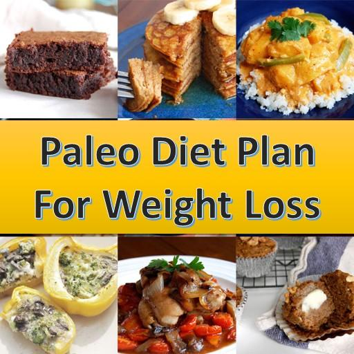 Paleo Diet Plan For Weight Loss Android APK Download Free By Blogging Pub