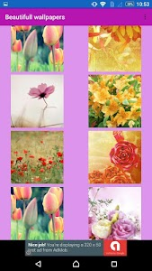 Flowers  wallpaper by Wallpix screenshot 16