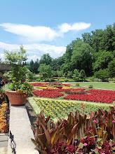 Photo: The Walled Garden