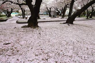 Photo: 岩室