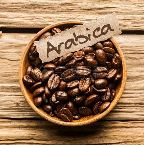 Cà phê hạt arabica- thực uống hoàn hảo cho ngày mới của bạn