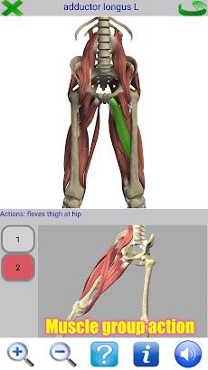 Visual Anatomy 2のおすすめ画像3