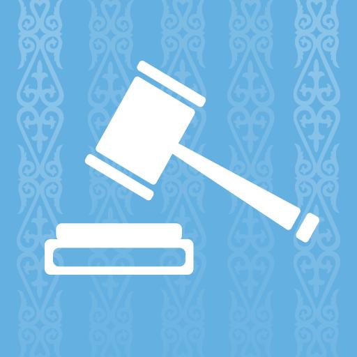 Кодексы и законы РК