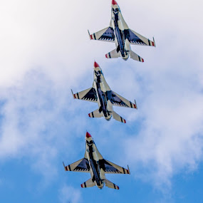 by Darrin Halstead - Transportation Airplanes ( patriotism, jet, formation, airshow, thunderbirds,  )