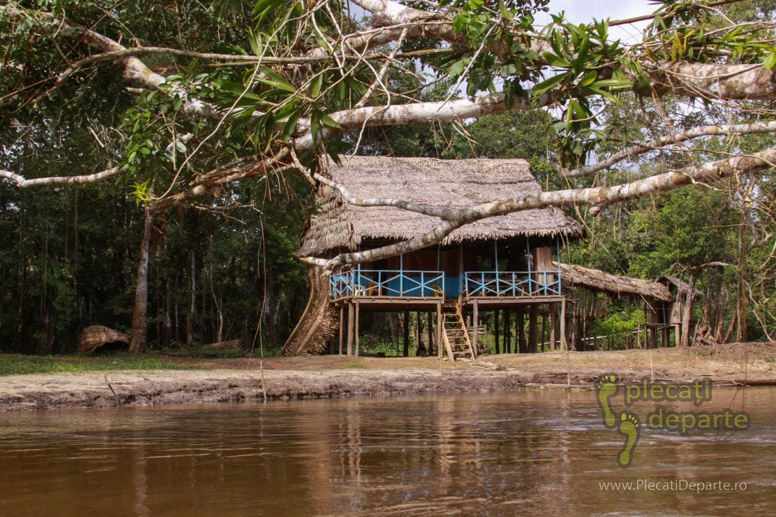 Refugiu construit pe piloni de lemn, in jungla amazoniana, in Rezervatia Nationala Pacaya-Samiria, Peru
