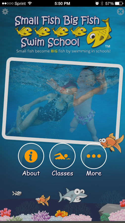 Small Fish Big Fish SwimSchool- screenshot
