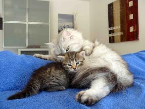 Photo: Quenzo con mami