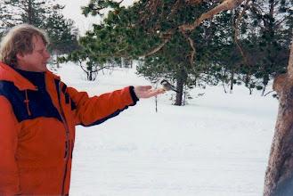 Photo: Matti syöttää lintuja Pyhäkeron kämpällä