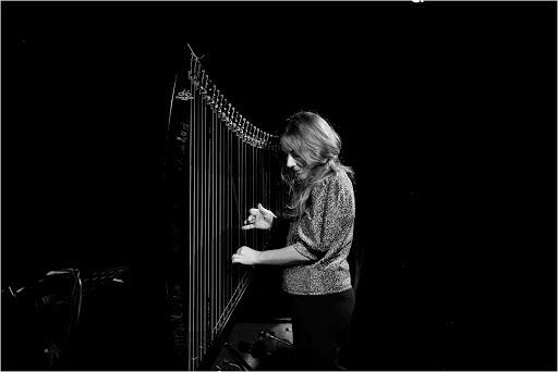 rafaelle Rinaudo harpe electrique