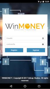 WinMoney - náhled